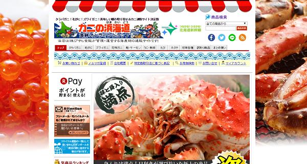 浜海道TOP